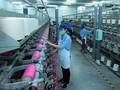 ANZ对越南经济前景表示乐观