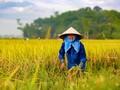 7e Congrès national de l'Association des agriculteurs vietnamiens