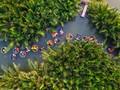 Hoi An nimmt 1. Platz auf der Liste der 15 weltweit besten Städte 2019 ein