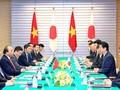 Вьетнам и Япония продолжают укреплять всестороннее стратегическое партнёрство