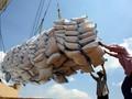 Xuất khẩu gạo 10 tháng đạt 5,2 triệu tấn