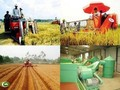 Langkah perubahan di pedesaan setelah 10 tahun melaksanakan Resolusi nomor 26 KS PKV