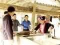 Menjaga kejuruan membuat kertas Ban dari warga etnis minoritas Dao, Kabupaten Bac Quang, provinsi Ha Giang
