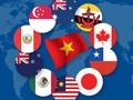 CPTPP-Peluang dan tantangan bagi perkembangan di Vietnam