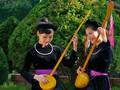 Kesenian membuat siterTinh yang dilakukan oleh warga etnis minoritas Tay di Provinsi Cao Bang