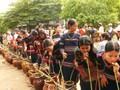 Warga etnis minoritas E De membuat minuman keras  tradisional Can- membina aroma musim Semi