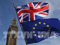 Brexit semakin menjadi rumit