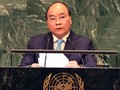 2020 год: двойная ответственность и решимость Вьетнама за международный мир и безопасность