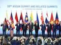 越南开展多边外交信心百倍地融入国际