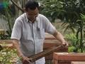 Son La farmer prosper from bee-keeping