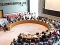 Việt Nam ứng cử vào Hội đồng bảo an: Trách nhiệm vì một thế giới hòa bình