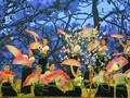 Arrancará la Fiesta de la Flor de Bauhinia 2019 en Dien Bien Phu