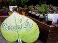 Greenlife reúne a jóvenes vietnamitas por una vida ecológica