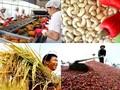 นำผลิตภัณฑ์การเกษตรเวียดนามเจาะตลาดที่มีมาตรฐานที่เข้มงวด