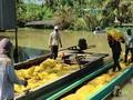 วิสัยทัศน์ใหม่สำหรับหน่วยงานการผลิตข้าวของเวียดนาม