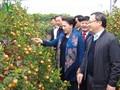 Chủ tịch Quốc hội Nguyễn Thị Kim Ngân thăm và làm việc tại tỉnh Hưng Yên