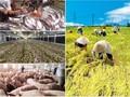 Nông nghiệp Việt Nam khi tham gia các Hiệp định thương mại tự do
