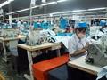 Vào EVFTA, doanh nghiệp Việt lo rào cản kỹ thuật khi xuất khẩu vào EU