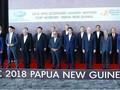 APEC 2018:成员经济体领导人集中讨论自由贸易问题