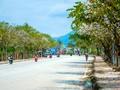 Tỉnh Điện Biên sẵn sàng cho Lễ hội hoa ban 2019