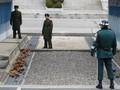 สาธารณรัฐเกาหลีจัดตั้งสภาเพื่อผลักดันเขตDMZให้เป็นเขตท่องเที่ยวแห่งสันติภาพ