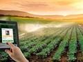 ผลักดันการประยุกต์ใช้วิทยาศาสตร์เทคโนโลยีในการพัฒนาการเกษตร
