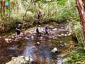 Eroberung der gefährlichen Abenteuerstraße Ngu Ho und des Wasserfalls Do Quyen