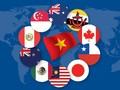世界媒体纷纷报道越南国会批准CPTPP