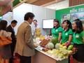 메콩 삼각주가 일본의 투자자본을 유치한다
