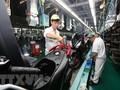 Fitch Solutions : 베트남경제 11년 동안 가장 높은 성장