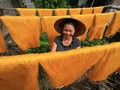 The beauty of working women in Vietnam