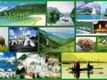 2019년 상반기동안 베트남 관광 증가율