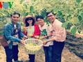 Познавательный туризм в деревнях провинции Ниньтхуан