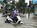 Тайфун «Шонтинь» обрушился на побержье провинций от Тханьхоа до Куангбиня