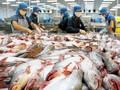 Вьетнамский экспорт пангасиуса достиг рекордного уровня