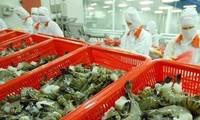 Udang tetap adalah komoditas perikanan ekspor utama