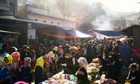 Pasar Dao San: warna-warni musim semi