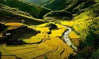 Muong Lo - Ayunan kebudayaan dari warga etnis minoritas Thai Den