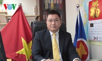 党大会の成功を喜ぶ香港・マカウにいるベトナム共産党員