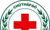 赤十字協会、慈善活動をさらに効果的に実現する必要がある