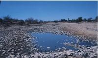 ニントアン省における気候変動の対応