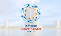 APEC 着実な発展へ向けて