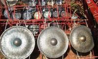 テイグエン地方のドラ文化