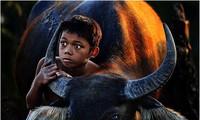 「若い考え方、若い見方」写真コンクールの受賞作品