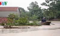 日本政府、ベトナムの洪水被災者を支援