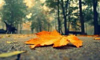 秋の終わりの歌