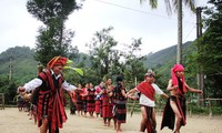 中部アルオイ県の少数民族の新米祭り