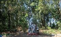 ハニー族の神聖な石「白髪の老人」とは