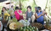 Pekan Ketahanan Pangan dan Dialog kebijakan tingkat tinggi dalam rangka Tahun APEC 2017 di Kota Can Tho