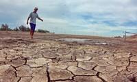 Vietnam junto con parlamentarios mundiales contra cambio climático